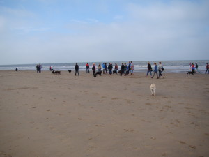 21 sept strandwandeling (59)